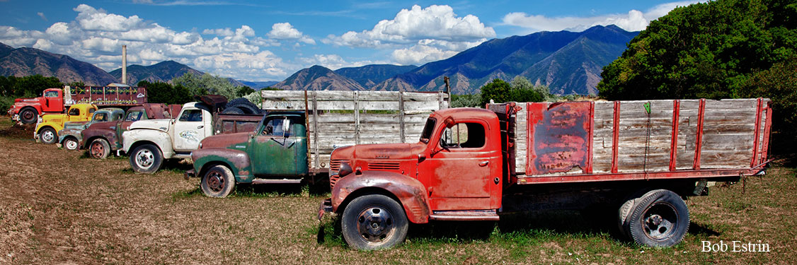 Old Trucks lined up Panorama